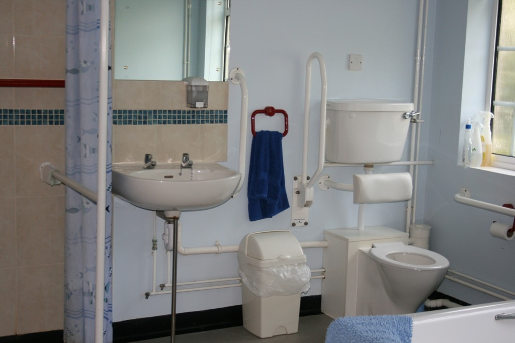 6 Handicap Bathroom Designs Suitable For You: Handicap Accessible Bathroom  Design