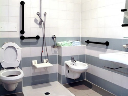 7 Wonderful Handicap Bathrooms Designs: Handicap Bathroom Design Ideas